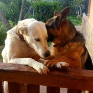 Shila & Lenny